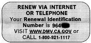 Excerpt from renewal letter sent to car owners in California. Text reads: RENEW VIA INTERNET OR TELEPHONE. Your Renewal Identification Number is 96116. Visit www.dmv.ca.gov or call 1-800-921-1117.