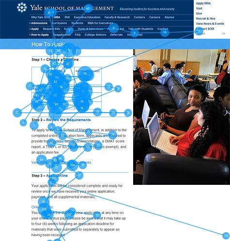 ある大学の志願プロセスについてのウェブページを閲覧しているユーザーのゲイズプロット