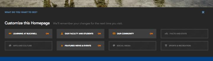 トップページのCustomize this Homepageツールは活用されなかった。この機能を使うには1つ1つのカテゴリーを選択あるいは非選択にする。その結果、対象コンテンツがトップページに追加されたり、非表示になる。