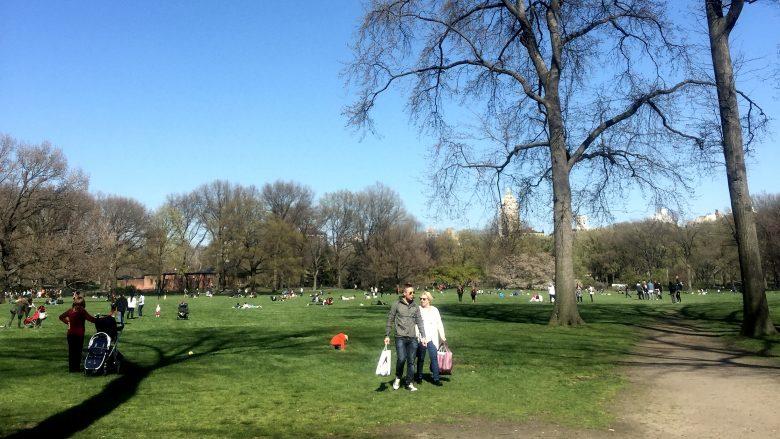 NY・セントラルパークでの昼下がり遠景。たくさんの家族が、思い思いの時間を過ごしている。
