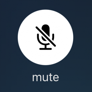 「状態切り替えコントロール:悪名高い「ミュート」ボタンの事例」の記事画像